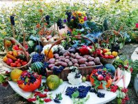 Праздник «Картошкины именины» в Ивановке