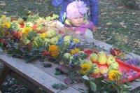День яблока 3.10.2015 preview