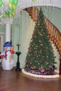 Новый год 2015 елка