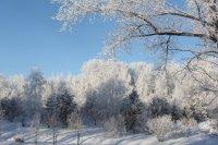 Зима Солнце 2015