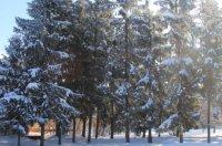 Зима 2014 preview