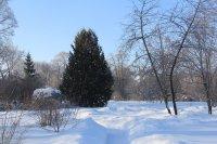 Зима 2014