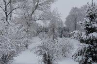 Зимняя Ивановка